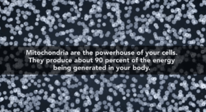 Mitochondria Image with Stats