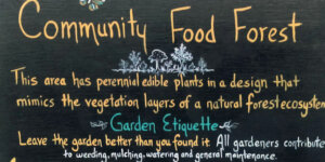 A black sign that says community food forest