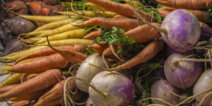 Carrots, Turnips, Parsnips, and other Root Veggies