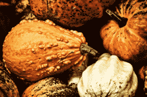 pumpkin polenta