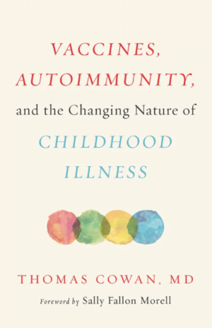 Vaccines, Autoimmunity, and the Changing Nature of Childhood Illness cover