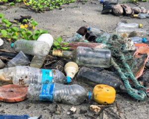 plastic waterbottles washed up on a beach