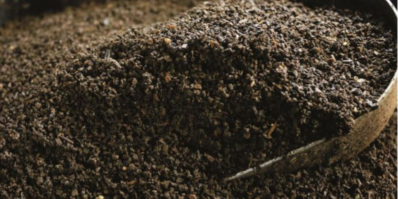 How Vermicast Benefits Soils And Plants Chelsea Green