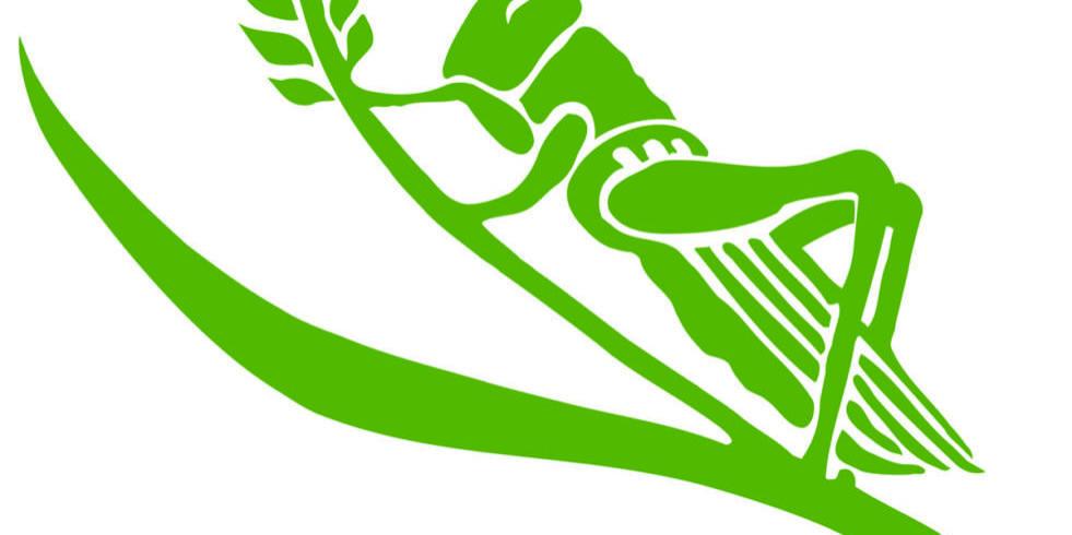 CGP_grasshopper_olive green
