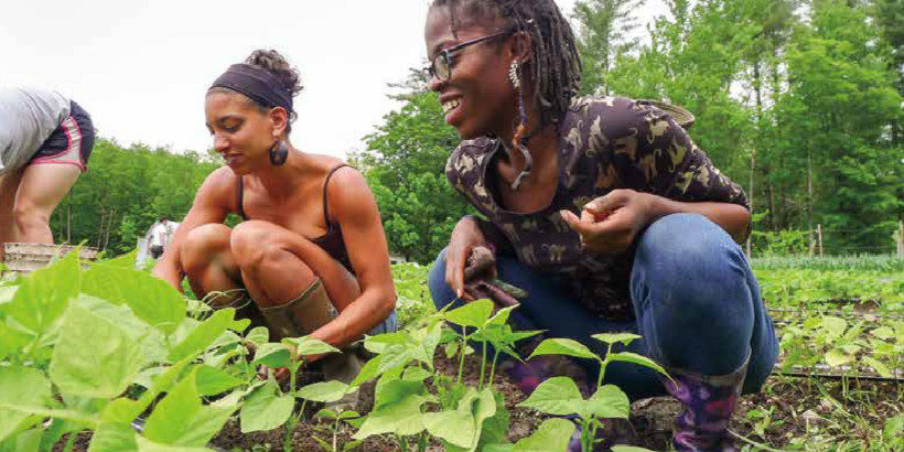 Leah Penniman ( left ) and Amani Olugbala ( right ) tend the beans during konbit at Soul Fire Farm