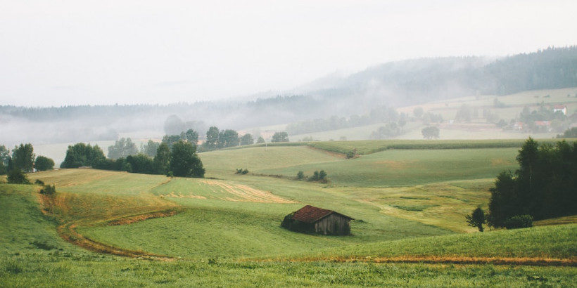 farmland with structure in ground