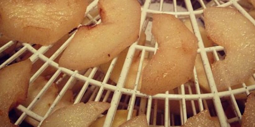 apples on drying tray