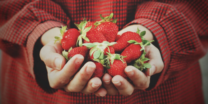 holding strawberries