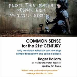 Common sense audio cover