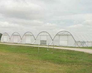 field tunnels