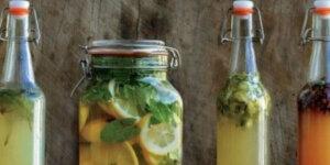 bottles fermenting